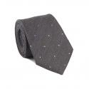 Cravate Grise à Pois Bleu